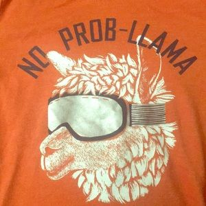 2t 'no prob-llama tee shirt hoodie